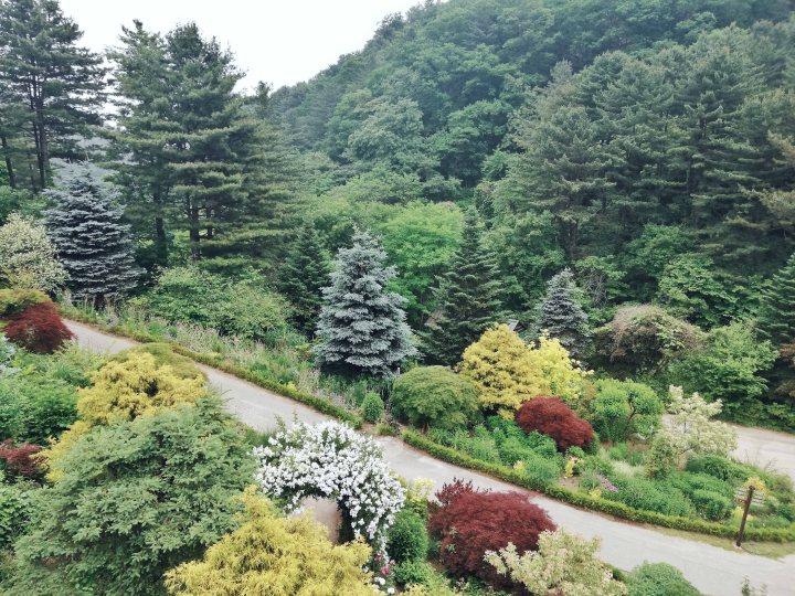 (6) Garden Overview 2.jpg